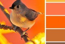 Warm sunny color palette / Color palette for future paitings