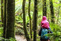 Travel - Victoria & Tasmania