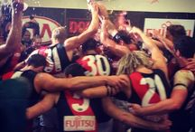 AFL / AFL || EFC