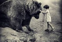 The Bear and the Girl / Imagery collected from a personal obsession, Myth, Fairy Tale and a photograph taken many years ago in France.