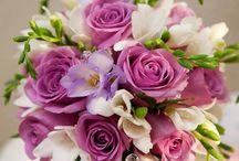 Flori si culoare.
