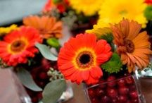Fall Centerpieces / Board for Inspiration