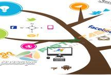 Fıstık web Tasarım / Web Tasarım Yazılım Hizmetleri