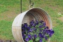 Outdoor decor/garden ideas