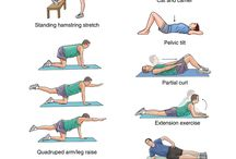 Low back pain exercises lage rugpijn oefeningen / Low back pain exercises