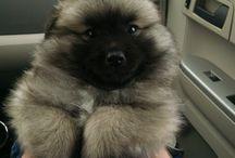cutie!!!!!!!!!!!!!