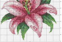 Cross stitch various / by Altagracia Rodriguez