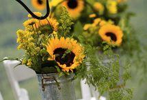 Wedding ideas :) / by Cassie Hart