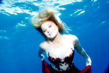 Marsaelitedivers uderwater photos / Marsa Alam Underwater session