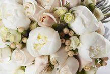 flowers by John emmanuel