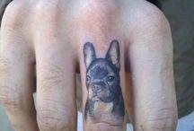 Rocky dog