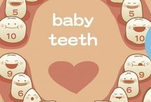 Orden crecimiento dientes