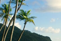 Dominica / by www.WhereToStay.com