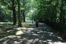 The Riverside Park / Riverside Park è un parco situato nella zona nord-ovest dell'isola di Manhattan a New York. Si affaccia sull'Hudson River, fiume che divide New York dal New Jersey.