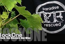 B1ockOne Cabernet Franc / It just takes one Block to make a difference...  One Block. One Vineyard. One Wine.  B1ockOne 100% varietal Bordeaux Cabernet Franc