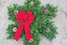 Hang In there, wreaths / by Keshia Thomas