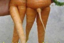 Funny haha / Carrots