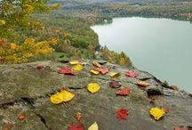 Northern Woodlands Conference / The 4th annual Northern Woodlands Conference will take place October 20-22, 2017 at the Hulbert Outdoor Center on Lake Morey in Fairlee, VT. Don't miss out on the Northeast's premier celebration of the natural history of our region and of the interactions between people and place. Featuring expert naturalists and leading authors, this event is for readers, writers, artists, teachers, and anyone else who loves the woods. Learn more: http://northernwoodlands.org/writersconference