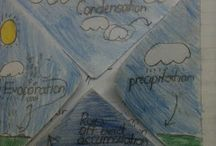 Water cycle / by Monica