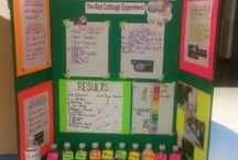 Science fair ideas / Science