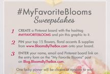 #myfavoriteblooms / Blooms by the Box