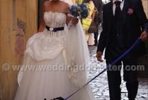 www.weddingdogsitter.com  / Alcuni dei nostri clienti stupendi del 2011! Lasceresti a casa il tuo migliore amico nel giorno del vostro matrimonio? / by Wedding Dog Sitter ®