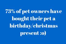 #BBMFunFactFriday / Lots of facts related to our furry friends!