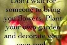 plants saying