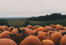 aes | halloween