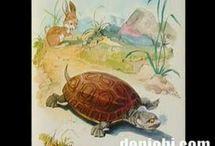 Thema: De haas en de schildpad