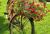Bicicletas macetero / Flores