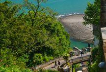 Beautiful Devon Coastline