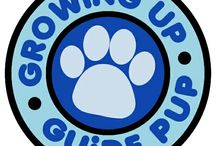 Growing Up Guide Pup / Our posters, interviews, podcasts, and more!