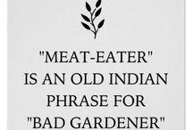 veggies / just vegan stuff and activism