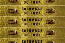aoreintaion pirates fort boyard