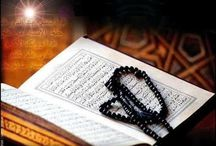 Quran Education / Quranreading.com is the world largest Quran education website on Internet. Learn basic Islamic and Quranic education from Quran tutors online at your home. Quranreading is working to spread the knowledge of Quran education online. / by QuranReading.com