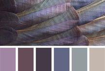 kolory lata