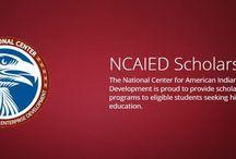 Scholars/Fellows Program