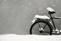 Seasons / by Karen Strother