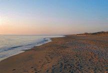 Spiaggia / La spiaggia dell'Hotel Marinetta!