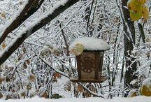 WINTER&SNOW