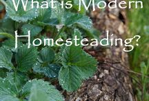 Homesteading / by Andrea Strawther