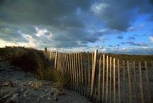 Destination Inspiration: Hamptons / by Michael Aram