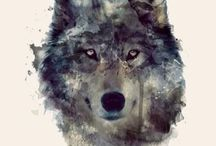WOLVES & DOGS