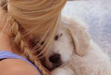 puppy love / by Katie Brown