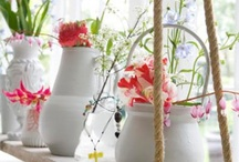 garden / lovely garden ideas