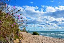 Michigan roadtrip / by Brittany Diehl