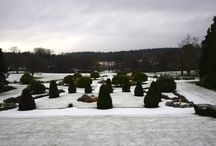 Formal Gardens/ Grounds / Take a walk around Lynford Hall's beautiful formal garden and ground