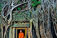 Cambodia Travel Inspiration & Destination Tips / Cambodia Travel Inspiration & Destination Tips, especially for foodies and adventure travelers.