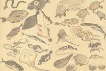 Hokusai Manga / Katsushika Hokusai (1760-1849). First Manga Master